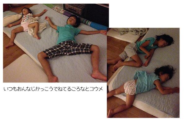 ↑夜はエアコンがなくても過ごせるリビングで寝てます。 たまにごろなの股の間にコウメがはさまってもがいてる